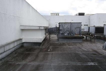 写真:屋上ウレタン防水工事施工前